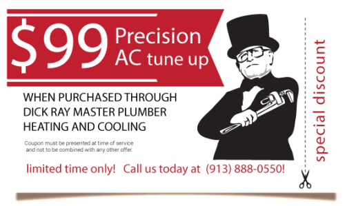 graphic relating to Precision Tune Auto Care Coupons Printable called Accuracy track coupon / Knotts berry farm supper